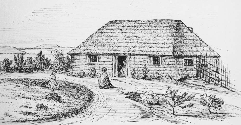 The-Elms-Te-Papa-History-NZ-New-Zealand